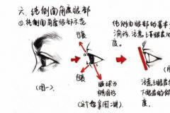速写人物五官画法分步骤讲解,适合零基础美术学习