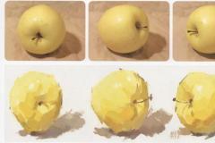 色彩静物丨单体水果的归纳与刻画步骤讲解
