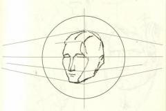 速写头骨及速写头部透视变化规律